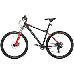 carrera fury mountain bike for sale