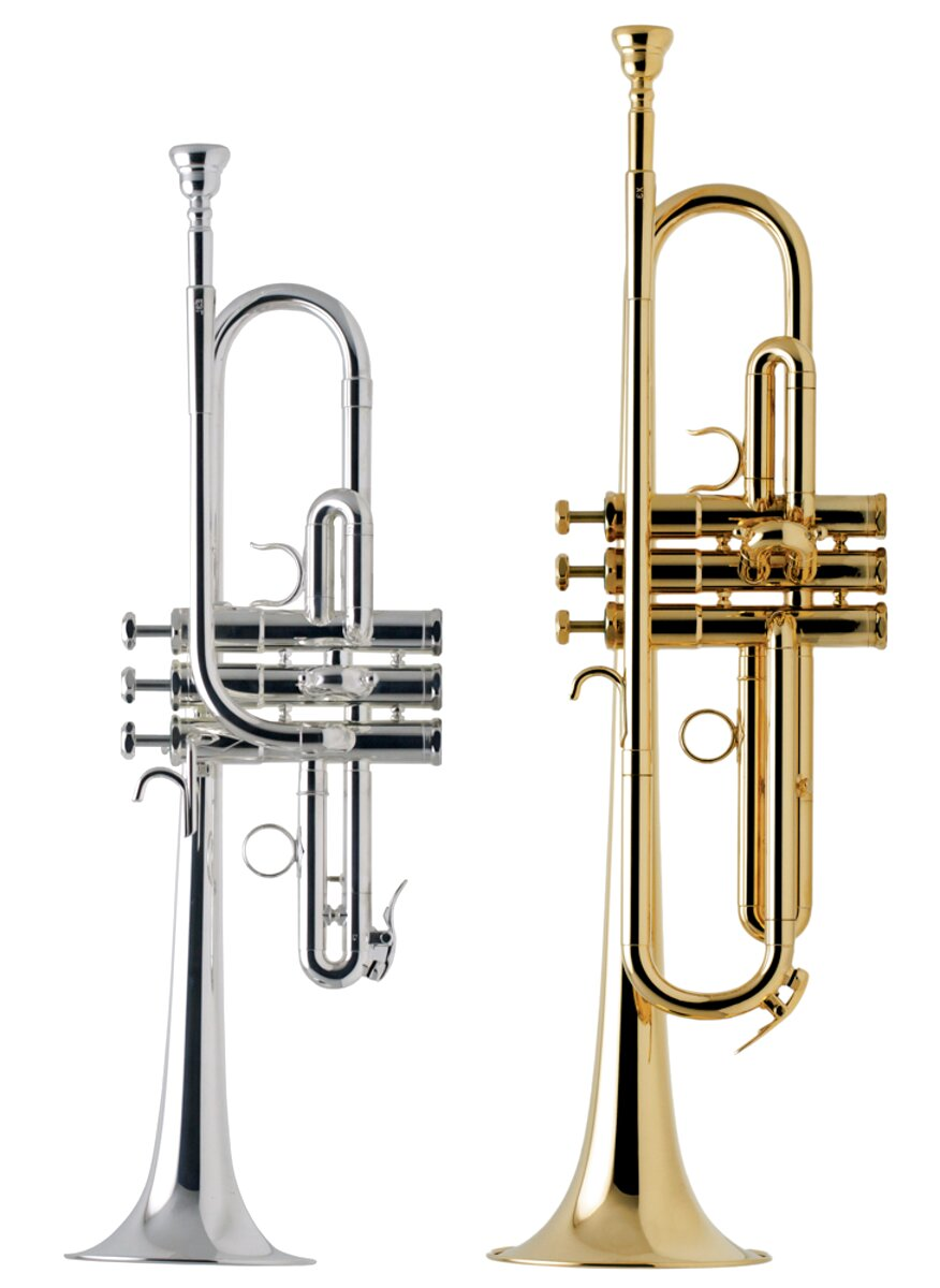 Ships Fast! 12A4a NEW Genuine Schilke Silver Trumpet Mouthpiece