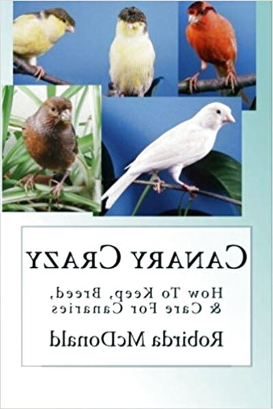 canary books for sale