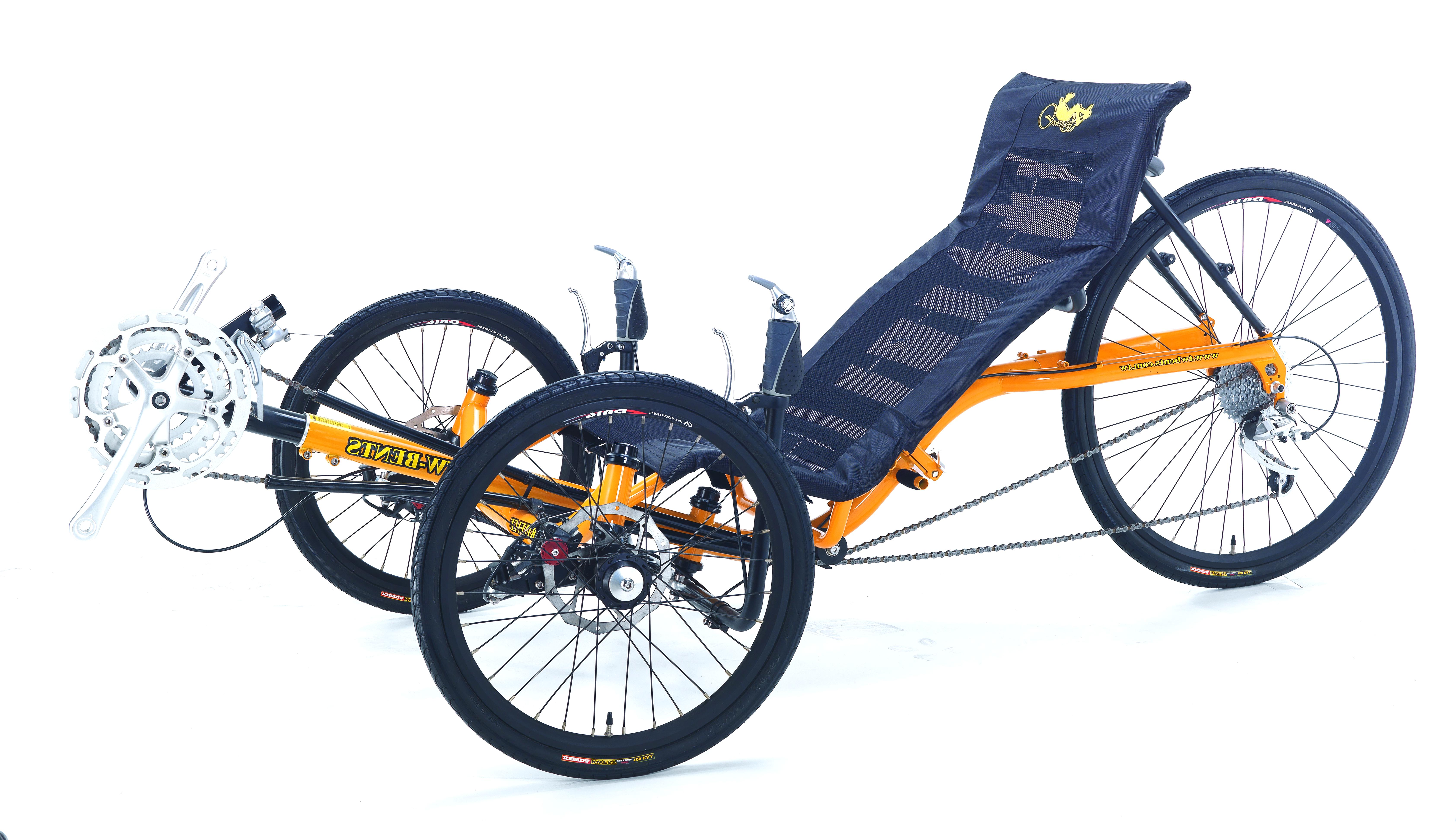 recumbent trike for sale