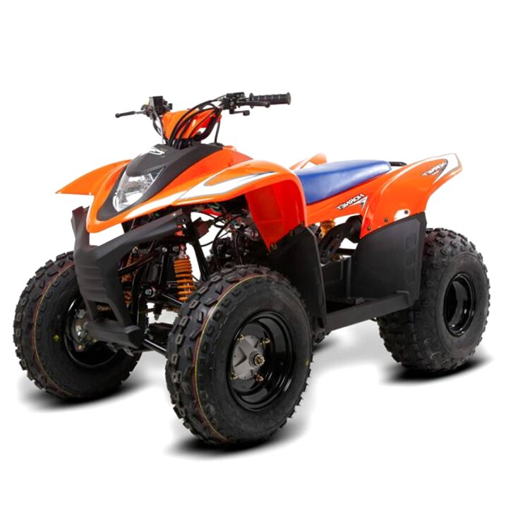 quad bikes 100cc for sale