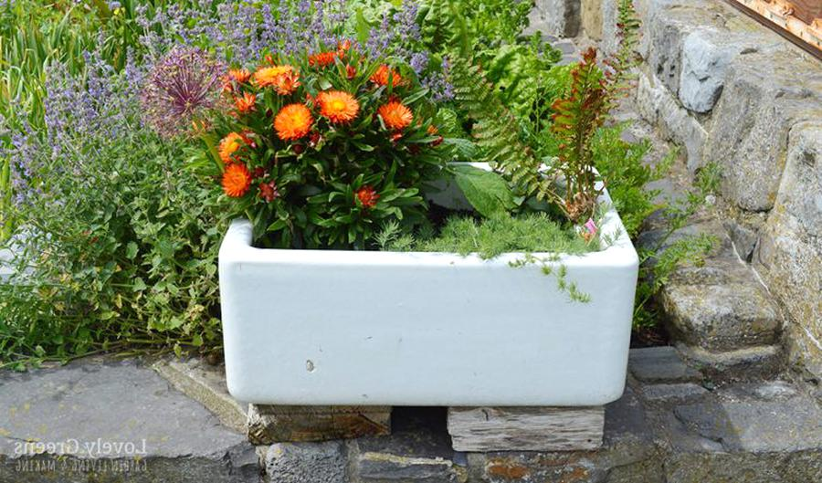 belfast sink planter for sale