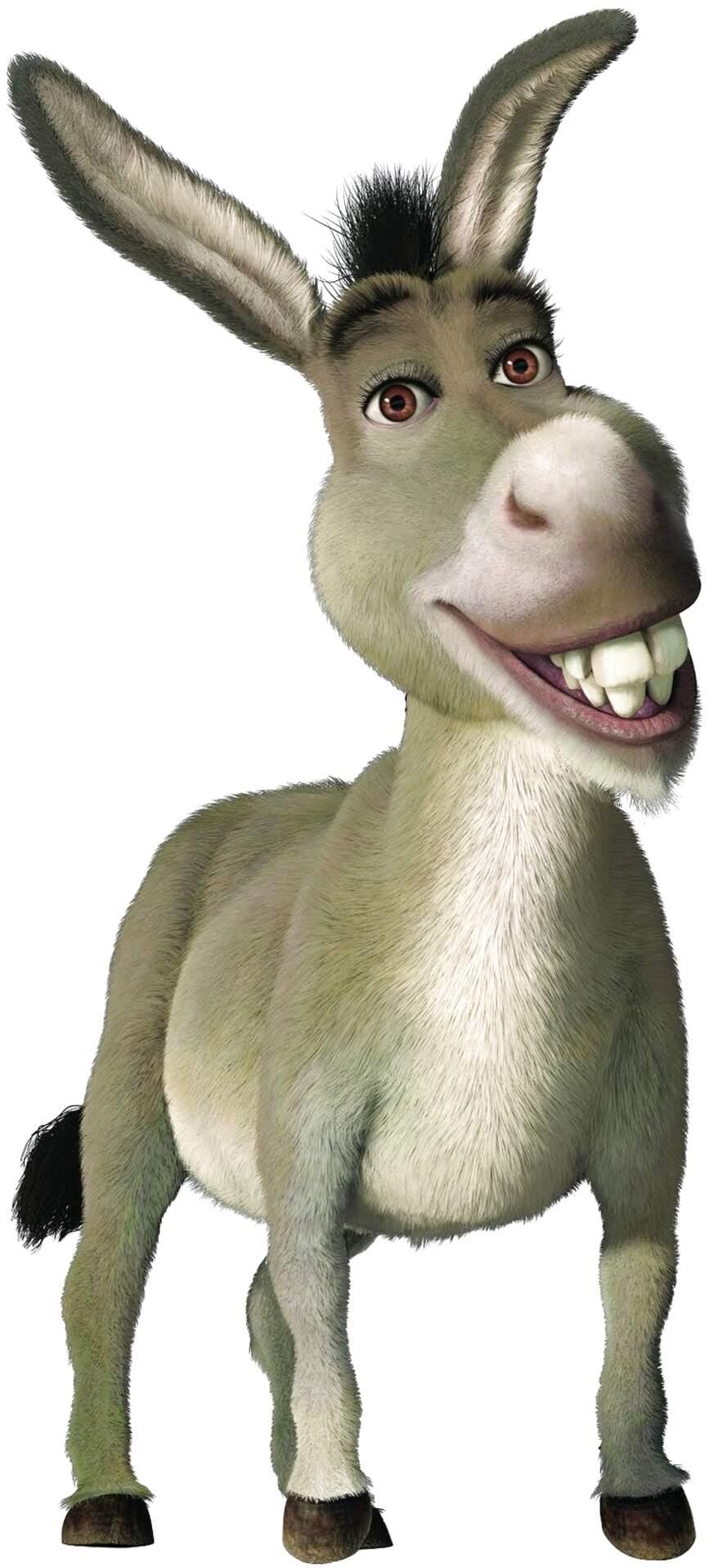 shrek donkey for sale