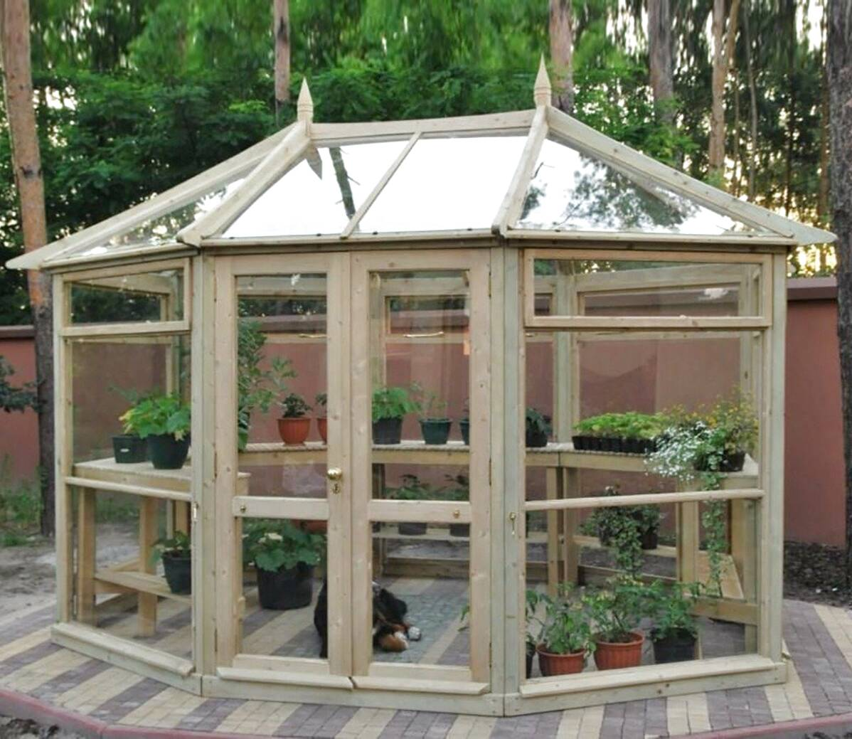 edwardian greenhouse for sale