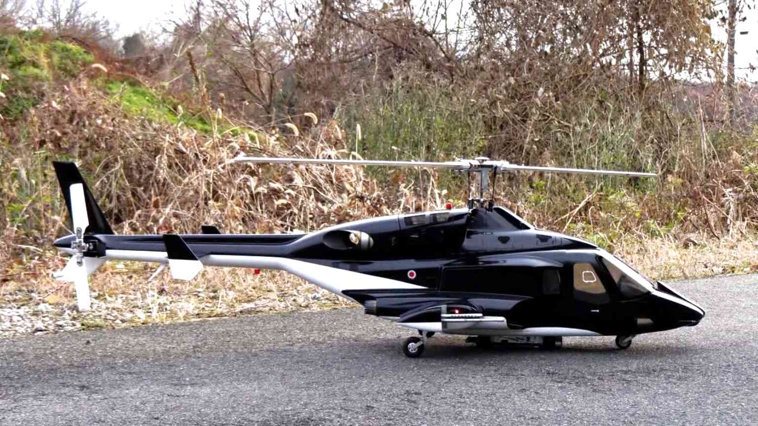 Scale Rc Helicopter for sale in UK | View 72 bargains