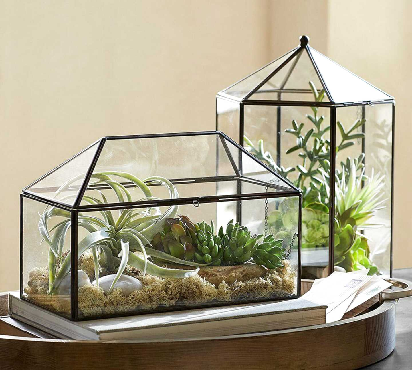 glass terrarium for sale