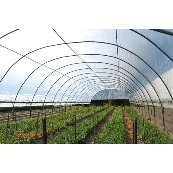 plastic greenhouse for sale