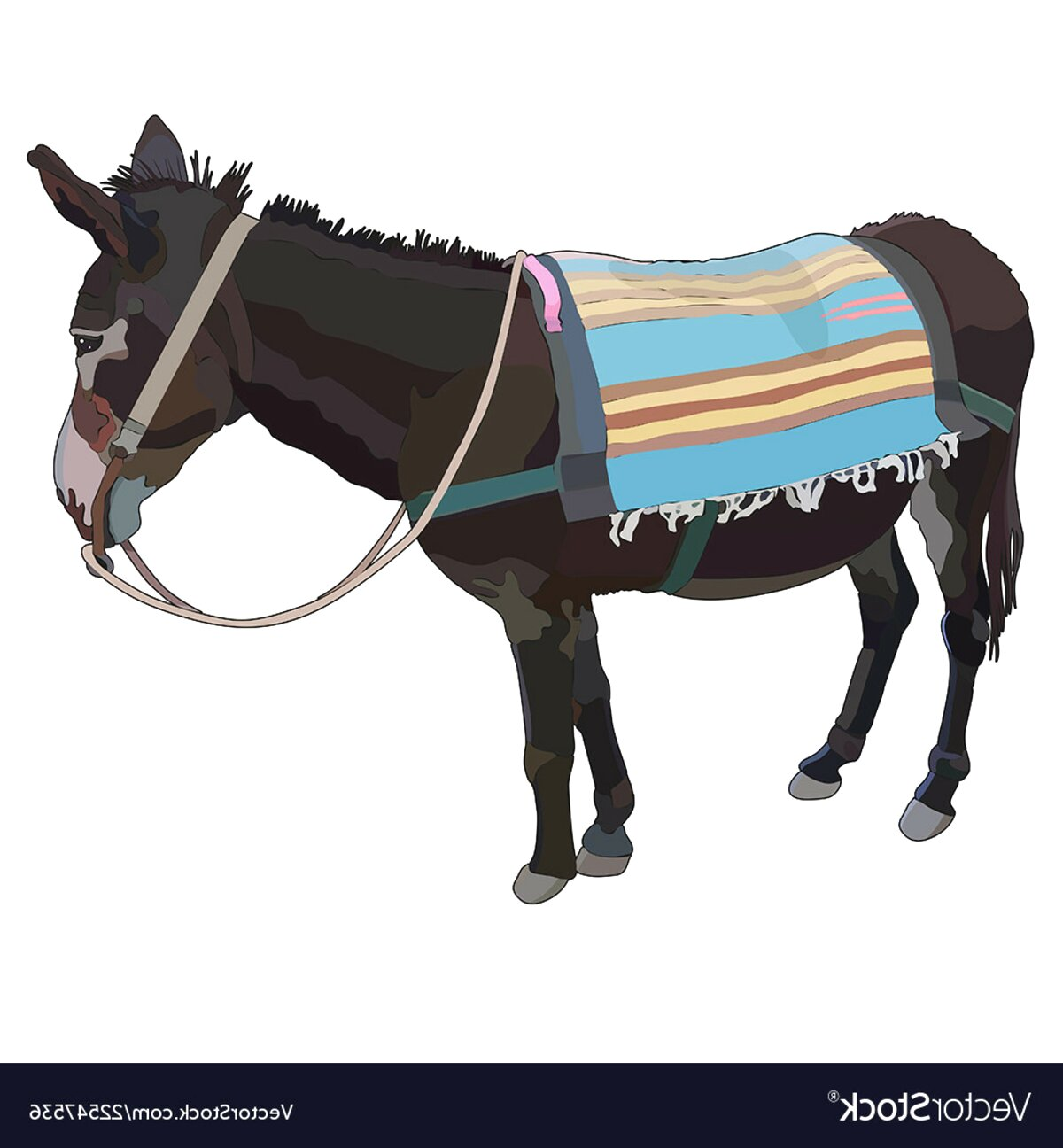 donkey rug for sale