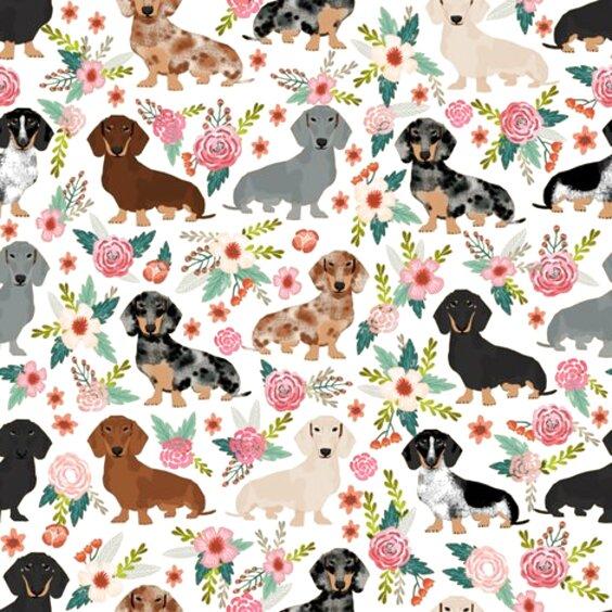 dachshund fabric for sale