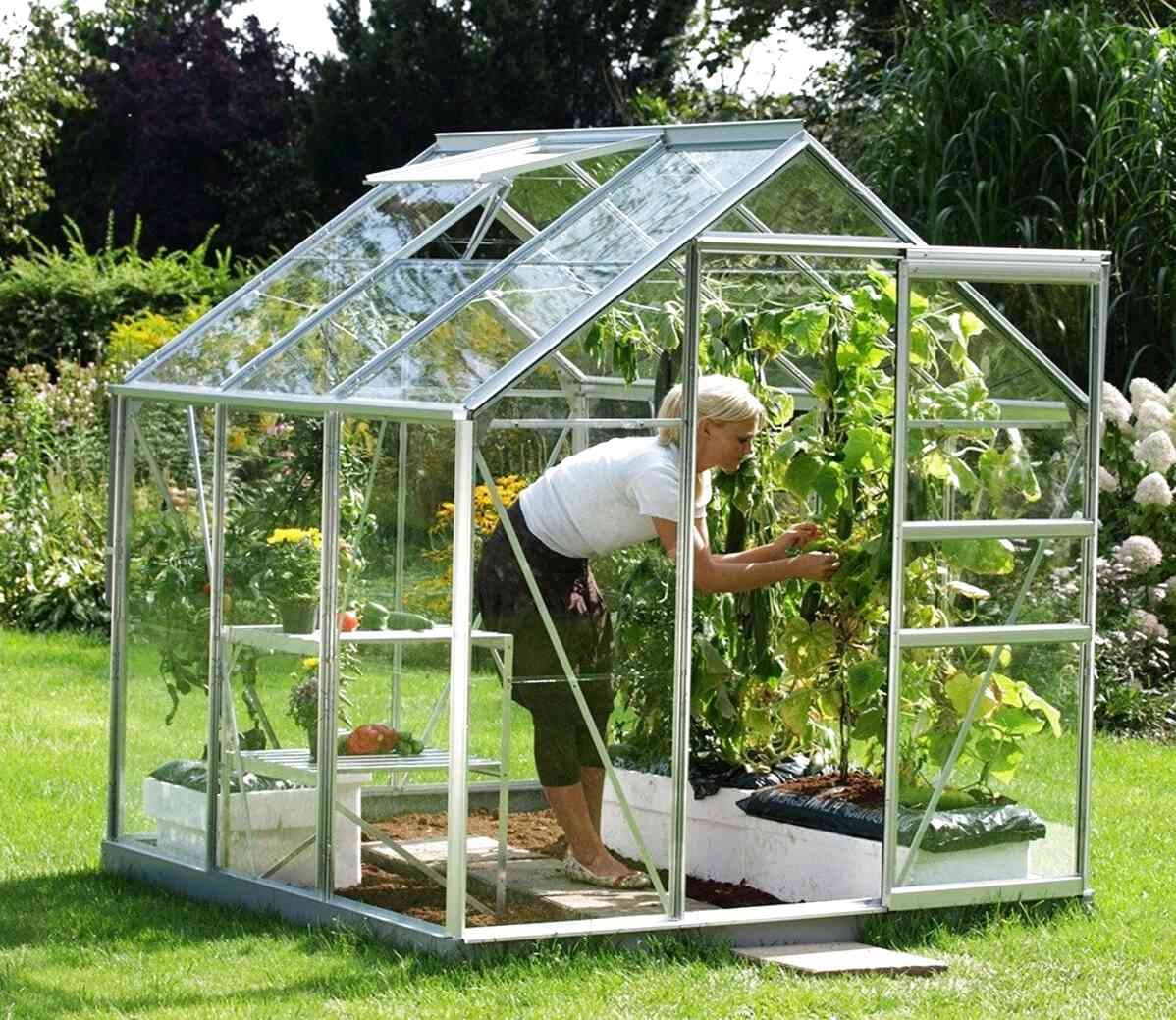 6x6 greenhouse for sale