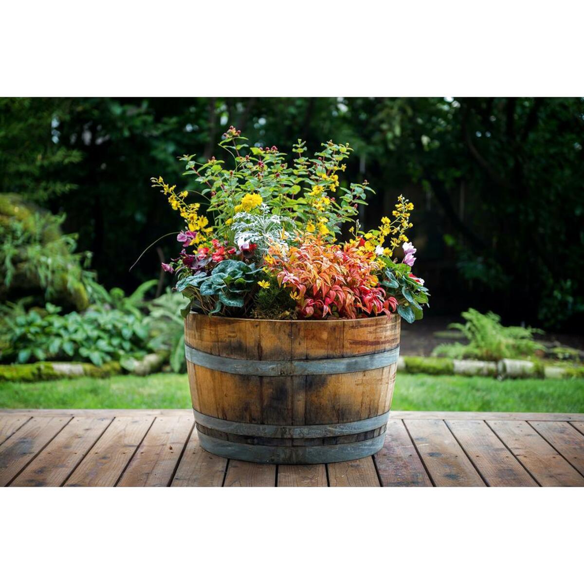 oak barrel planters for sale